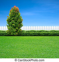 white fence and green tree
