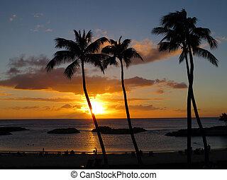 Ko Olina Sunset - Sunsets on Ko Olina lagoon between coconut...