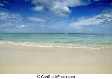 Mauritian tropical beach - tropical beach of Mauritius...