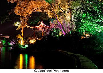 Illuminated tree, Guilin, China