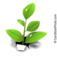 growing - 3d illustration of spring growing plant, over...