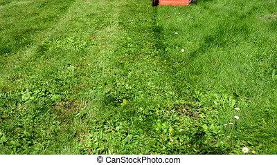 woman skirt cut grass - woman girl in skirt and flip-flop...