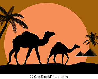 Camel and palms on sunset backgroun - Vector illustration of...