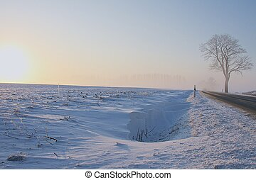 street into the winter - a foggy winter landscape in the...