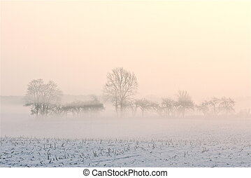 winter landscape - a winter landscape on a december morning