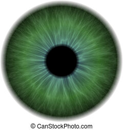 Eyeball Clip Art Isolated on a White Background