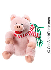 Piggy Soft Toy on White Background