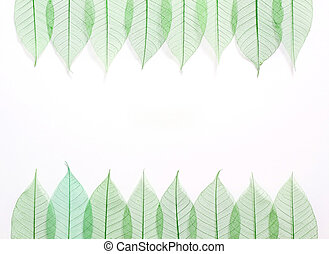 Skeleton leafs seamless abstract background