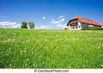 Family House in a Summer Landscape - Family house in a...