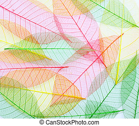 colored Skeleton leafs seamless abstract background