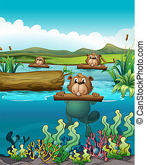 Three beavers in the river - Illustration of the three...