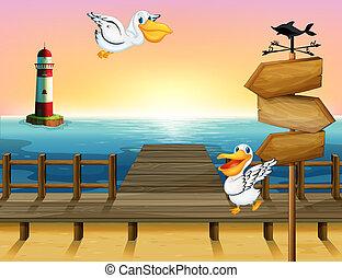 Two birds near a wooden arrow board - Illustration of two...