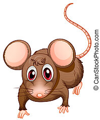 A front view of the brown rat - Illustration of a front view...