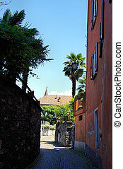 A narrow alley with southern flair in Ascona in the Canton...