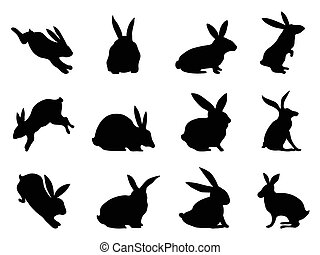 rabbit silhouettes - isolated black rabbit silhouettes from...