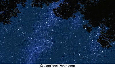 Night Stars 1 - Time lapse of stars moving across the sky in...