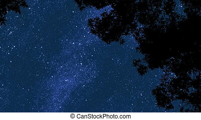 Night Stars 2 - Time lapse of stars moving across sky in...