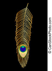 peacock feather - Vector illustration of peacock feather