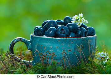 Blueberries in a blue cup