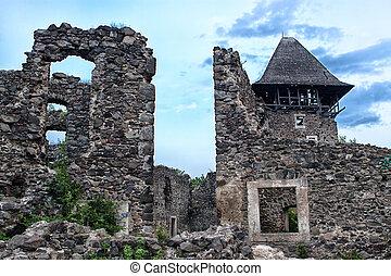 ruins Castle Nevitsky Transcarpathia Ukraine - Castle ruins...