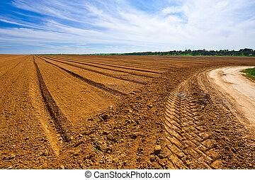 Furrow - Dirt Road between Plowed Fields in Israel