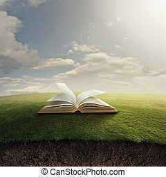 Bible on grass - An open Bible in the grass with underground...