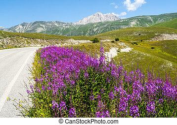 The road of Campo Imperatore (L'Aquila, Abruzzi, Italy) in...