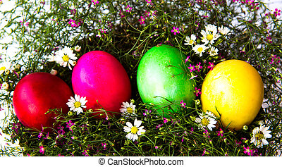 Colorful easter eggs on grass and flower