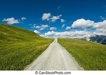 Mountain road on wide open green meadow in swiss alps