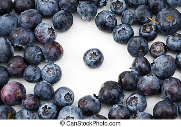 Standout Blueberry - Single blueberry in the center of a...