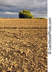 plowed farm field landscape