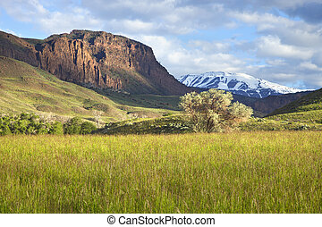 Field and mountains in Wyoming - A field and trees below a...