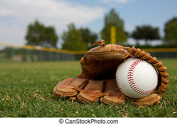 Baseball in a Glove - New Baseball in a Glove in the...