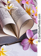 corazón, formado, biblia