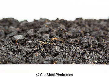 Close-up of organic soil