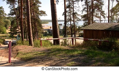 Holiday cottages in a pine forest