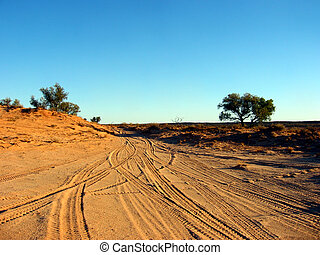 Desert Tracks - Tire tracks leading out of a remote campsite...