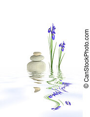 Zen Tranquility - Zen abstract design of two blue iris...