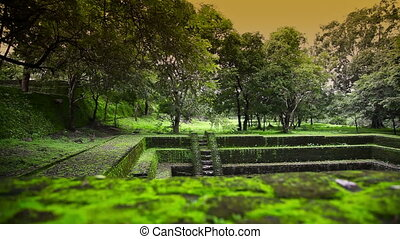 Polonnaruwa ancient city - Polonnaruwa city in Sri Lanka,...