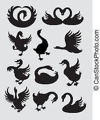 Ente, schwan, silhouetten, vektor