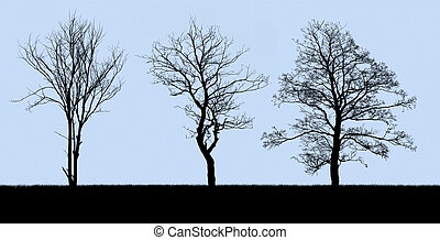 tree silhouette isolated on blue