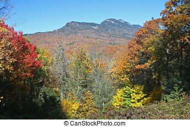 autunno, montagna, colori, incorniciato