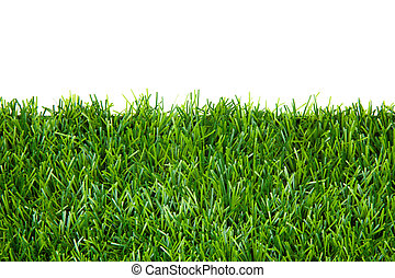 frame background with green grass isolated