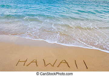 Hawaii Beach and Waves - The word Hawaii is written in the...