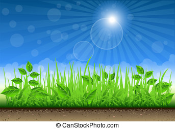 Grass Border On Clear Sky Background - Detailed illustration...