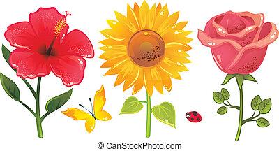 brilhante, vetorial, flores, butterfl