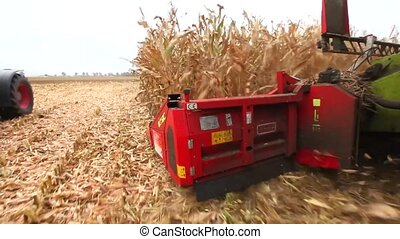 Thresher harvesting maize - View of the blades on a thresher...