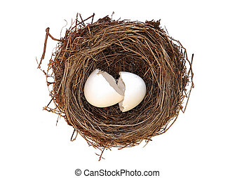 birthday - broken empty egg in nest isolated over white