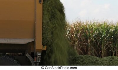 Tipping out corn silage - Closeup view of the back of an...