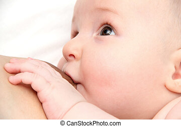 breastfeeding - newborn baby breastfeeding infant looking at...